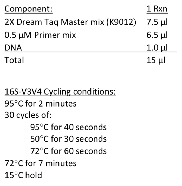 16S-V3V4 recipe and cycling conditions
