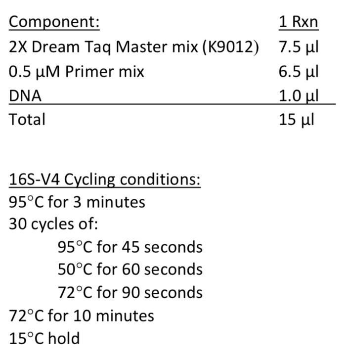 16S-V4 recipe and cycling conditions